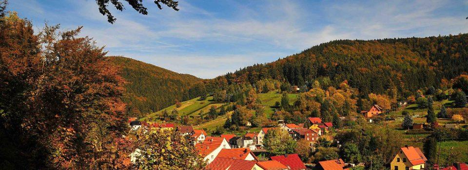 Blick auf Schleusingerneundorf